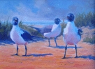 Coastal seagulls original fine art oil painting by Steven Bielstein